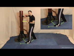 Wing Chun Wooden Dummy Video Training